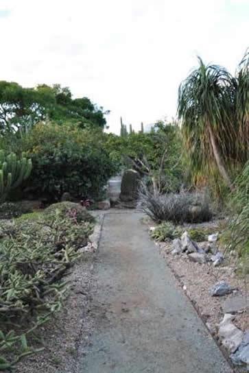 Le jardin ethnobotanique de oaxaca for Jardin oaxaca